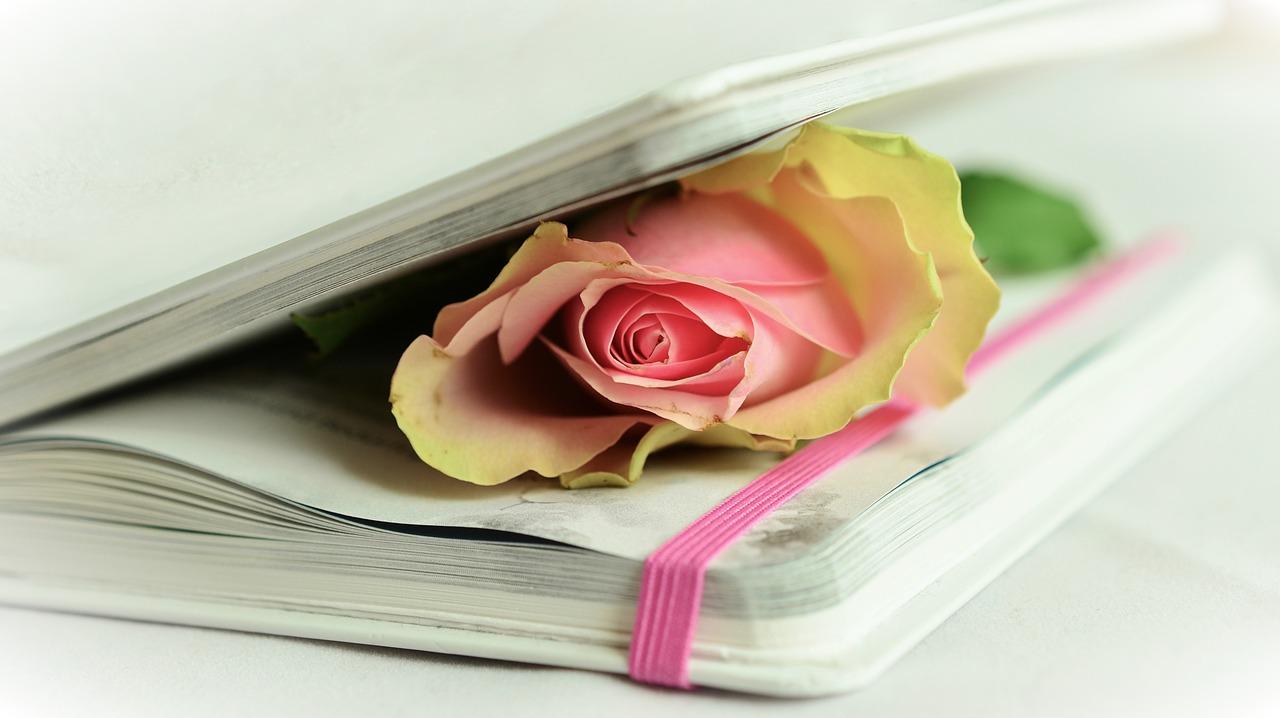 voce regalata alle poesie